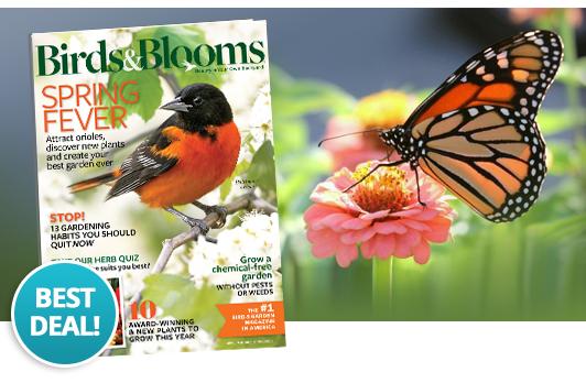 birdsblooms