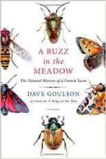buzzmeadow