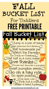 fall-bucket-list-for-toddlers-pin