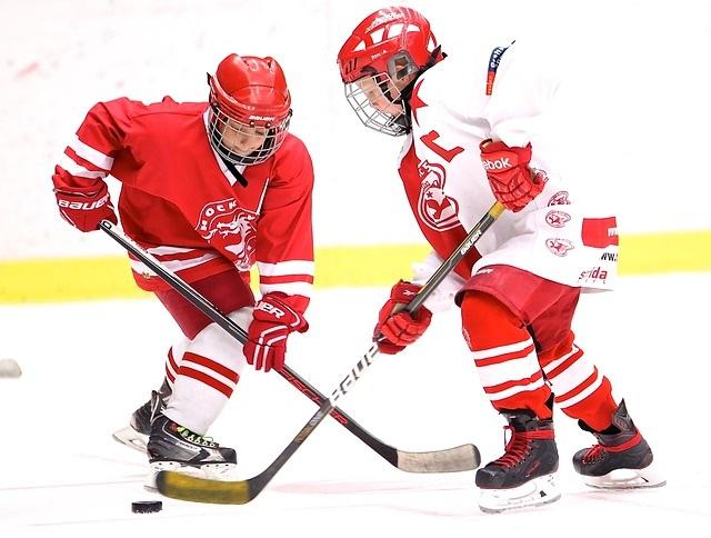 hockey-2274219_640