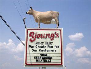 b77210670e31b91703351dfb003a2416--jersey-cows-best-ice-cream