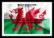 Welsh flag texture crumpled up
